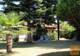 Novigrad Istra - apartma - počitniška hiša