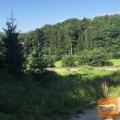 Slovenska Bistrica Križni Vrh 1350 m2