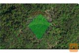Vidonci, Kmetijsko Zemljišče In Gozd
