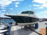 Motorni čoln DONAT 800