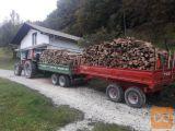 Prodam bukova drva
